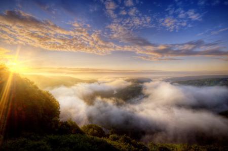 Обои Германия, природа, лес, туман