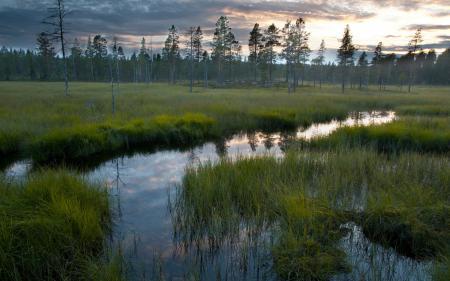 Фото закат, река, поле, природа