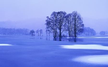 Обои Озеро, деревья, лед, снег
