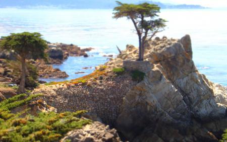 Фото пейзажи, tilt-shift, камни, дерево