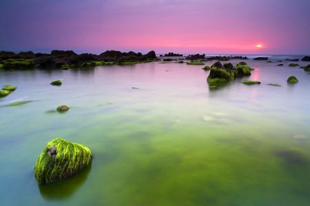 Фото утро, море, океан, камни