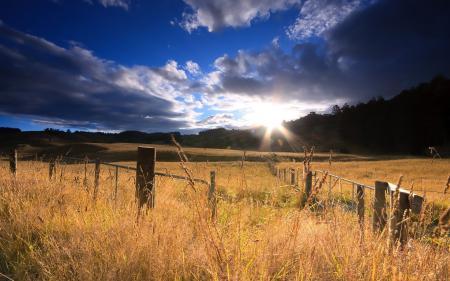 Картинки поле, солнце, восход, горы