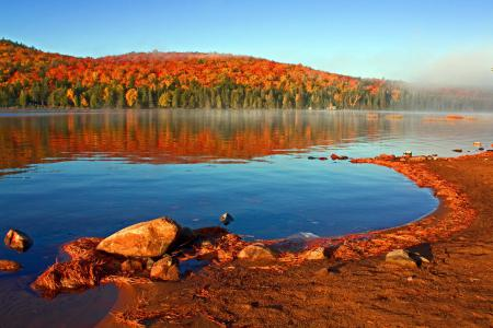 Заставки осень, озеро, берег, лес
