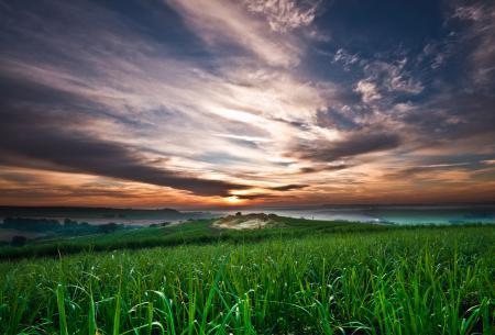 Заставки небо, облака, закат, трава