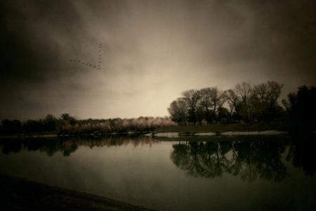Фото осень, природа, река, деревья