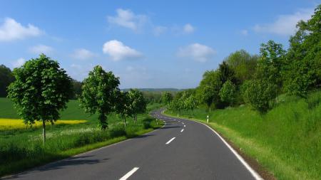 Фото Дорога, поворот, деревья, поле