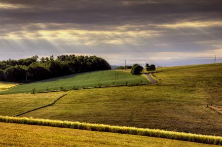 Обои поля, долина, свет, небо