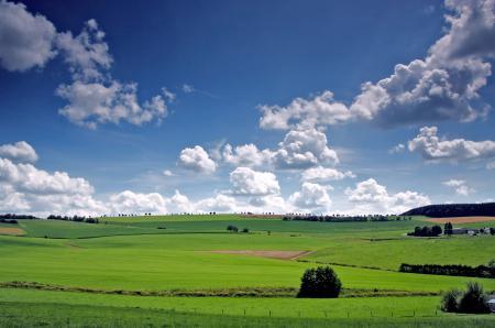 Картинки поля, долина, деревья, небо