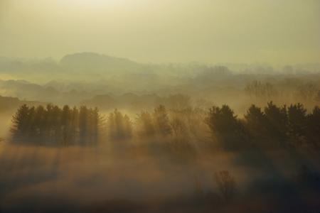 Картинки вечер, туман, природа, пейзаж