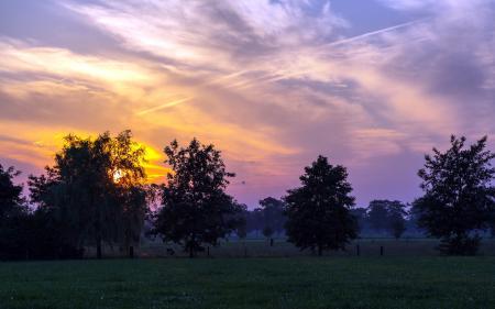 Картинки закат, поле, деревья, пейзаж