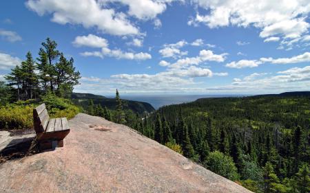 Фотографии горы, лес, скамья, пейзаж
