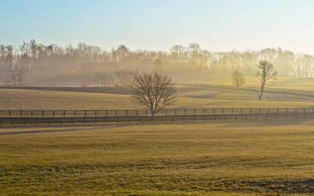Обои поле, забор, туман