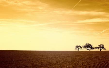 Фото закат, поле, пейзаж