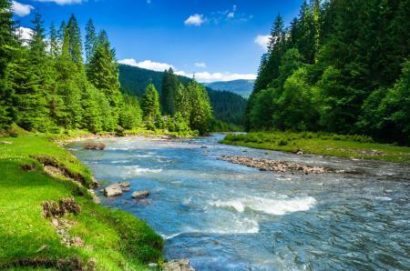 Фото горы, природа, зелень, трава
