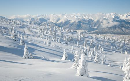 Заставки пейзажи, италия, природа, зима