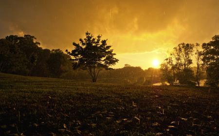 Фотографии дождь, дожди, настроение, капли