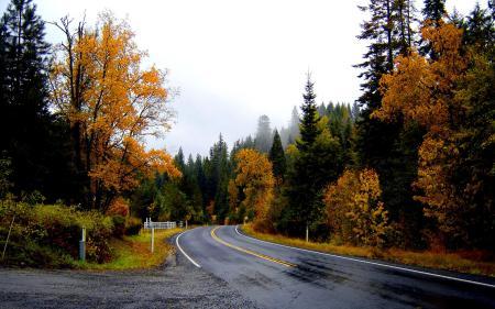 Картинки Осень, Дорога, Асфальт, Поворот