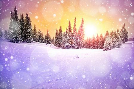 Фотографии зима, снег, сугробы, снежок