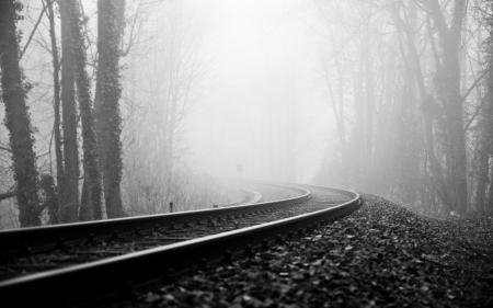 Обои рельсы, деревья, туман, насыпь