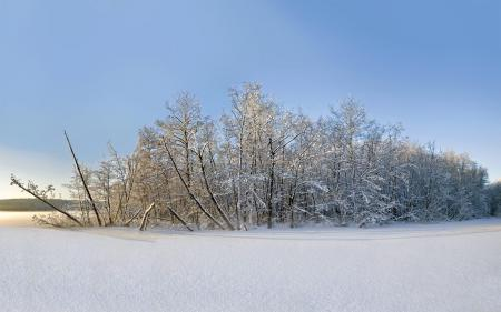 Картинки зима, снег, пейзаж
