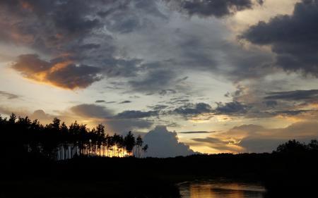 Обои закат, вечер, пейзаж, деревья