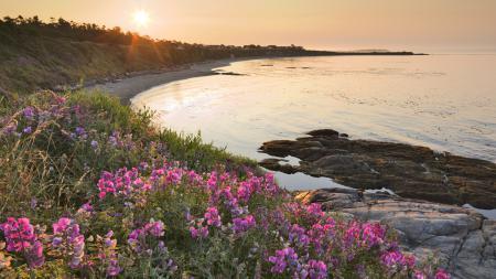 Фото пейзаж, природа, свет, солнце