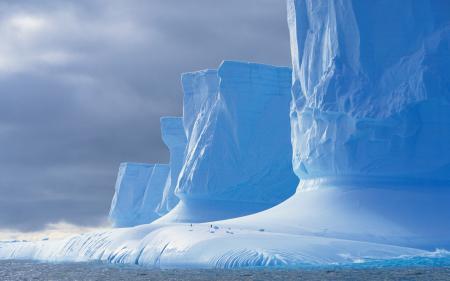 Картинки ледник, море, пингвин, Антарктида