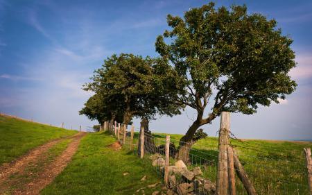 Заставки пейзажи, природа, заборы, дерево