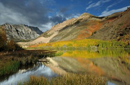 Обои горы, лес, река, осень