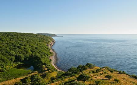 Фото Пейзажи, landscape, побережье, лес