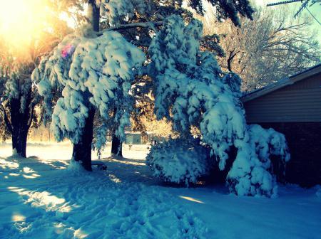 Фотографии пейзаж, природа, nature, зима