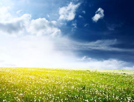 Картинки Wide field, синее, небо, облака