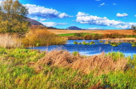 Фотографии небо, озеро, поле, деревья