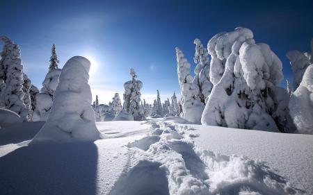 Заставки зима, финляндия, снег, winter