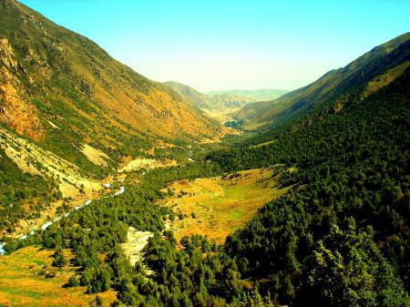 Заставки горы, лес, далина