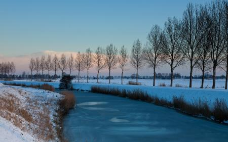 Фото зима, деревья, снег