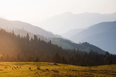 Фотографии Грузия, пейзаж, природа, горы