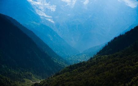 Обои природа, пейзаж, лес, деревья
