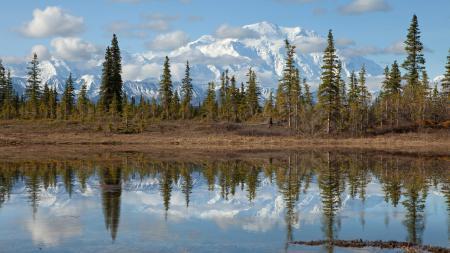 Фотографии Grand teton, national park, горы, лес