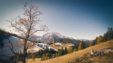 Заставки горы, небо, лес, осень