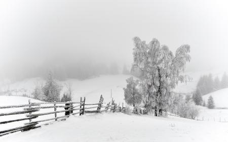 Фото зима, снег, деревья, забор