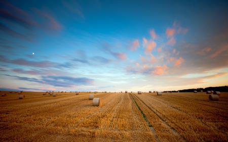 Картинки поле, сено, небо, лето