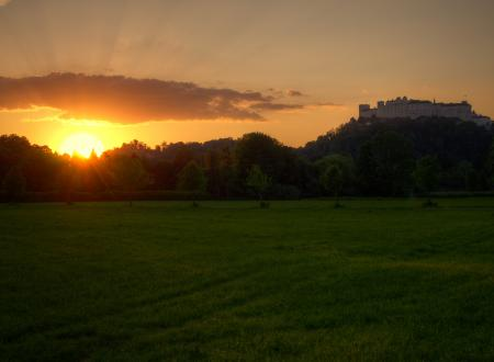 Картинки закат, зелень, солнце, трава