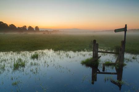 Фото туман, болото, вода, указатель