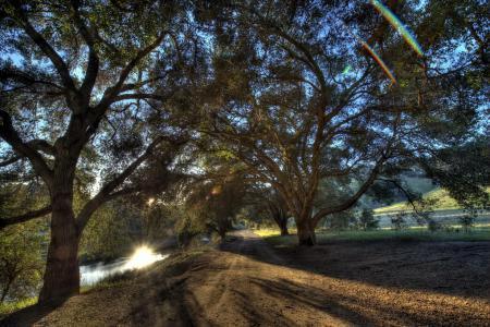 Картинки дорога, река, деревья, пейзаж