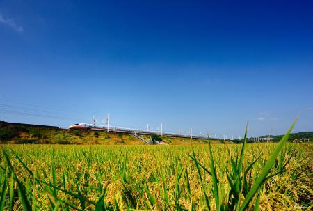 Заставки природа, трава, поезд, скоростной