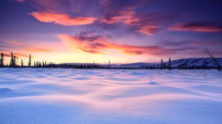 Обои зима, снег, равнина, пейзаж