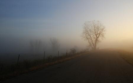 Фото пейзажи, природа, туманы, дорога