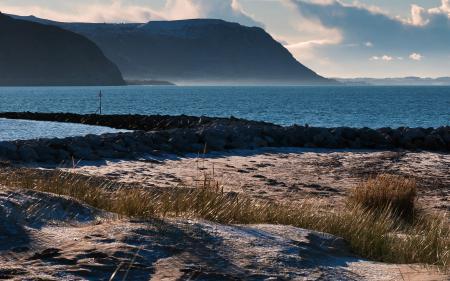 Фото пейзажи, берег, побережье, трава
