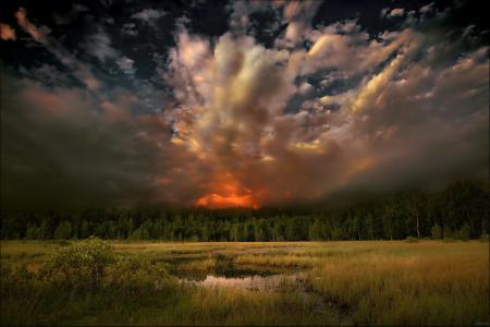 Фото закат, вечер, пейзаж, деревья